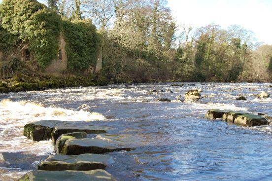 River Tees near Egglestone